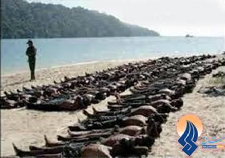 http://afghanmaug.net/images/halem3.jpg
